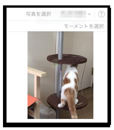 【iCloud】ベータ版iCloudの「写真」にアップロード出来るようになったのでアップロードしてみた