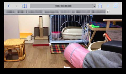 iPhone使って、赤ちゃんやペットの見守りカメラに最適な「Home Streamer」