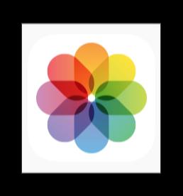 iPhoneのストレージを消費せず無料で 5,000枚の写真を利用する方法
