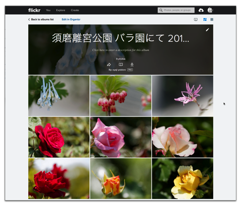 【Mac】Safariなどブラウザで表示&編集「flickr」、「Album」とは?「Album」作成方法