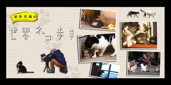 「岩合光昭の世界ネコ歩き」の新作「プラハ」は今夜 20時からBSプレミアムにて