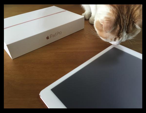 「9.7インチiPad Pro Wi-Fi + Cellular 128GB」が届いたので設定とファーストインプレッションなど