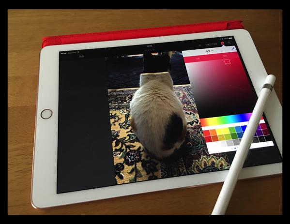 やはりこれだね!「9.7インチiPad Pro用Smart Cover – (PRODUCT)RED」