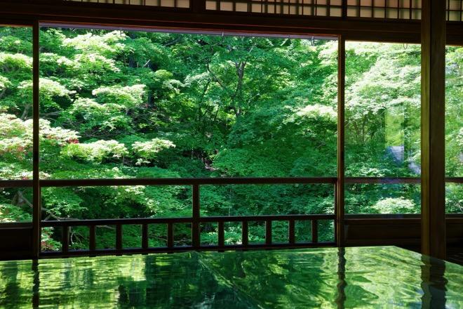 青もみじに息をのむ「京都・瑠璃光院」