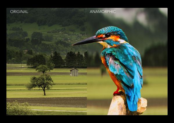 「iOS 11」で提供されたDepth APIを使用して普通の写真を映画の表情に「Anamorphic」