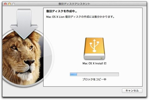 Lion recovery 003