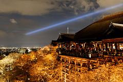 京都・東山花灯路に行ってきました