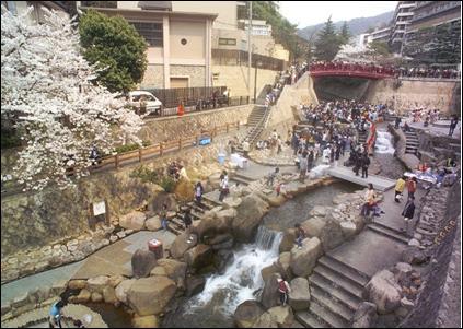 Sakura 005