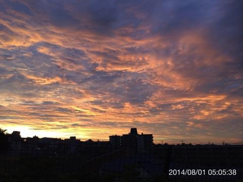 今日(2014.08.01)のウォーキング