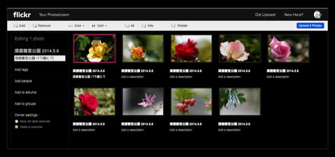 Flickr Album 014