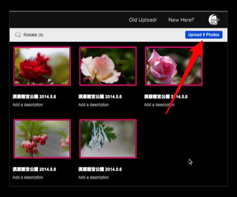 Flickr Album 020a