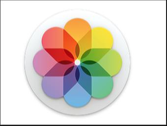 【Mac】なんと¥120で「写真.app」から無料の写真編集プラグイン「Nik Collection by Google」を利用する方法