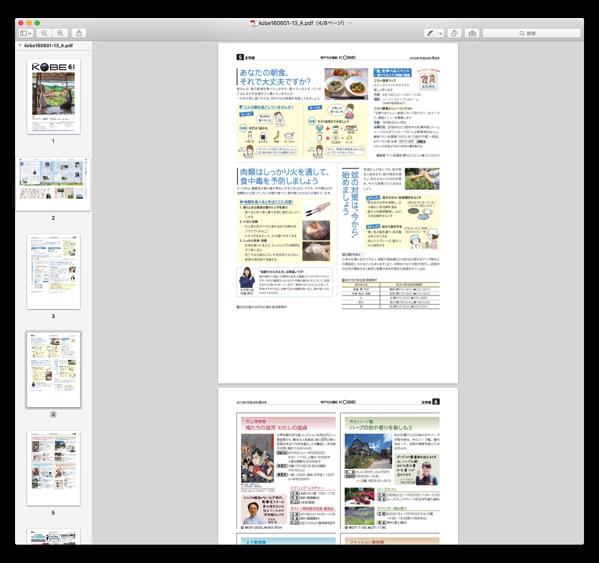 Preview PDF 010