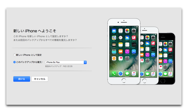 IPhoneBackUp 006