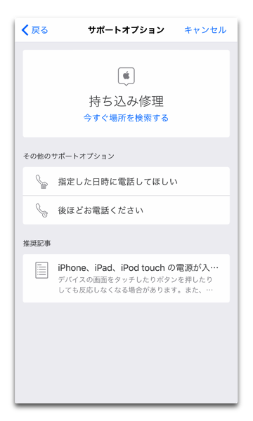 AppleSaport 006