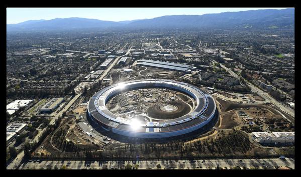 AppleはApple Parkのためにたくさんの木を購入しています