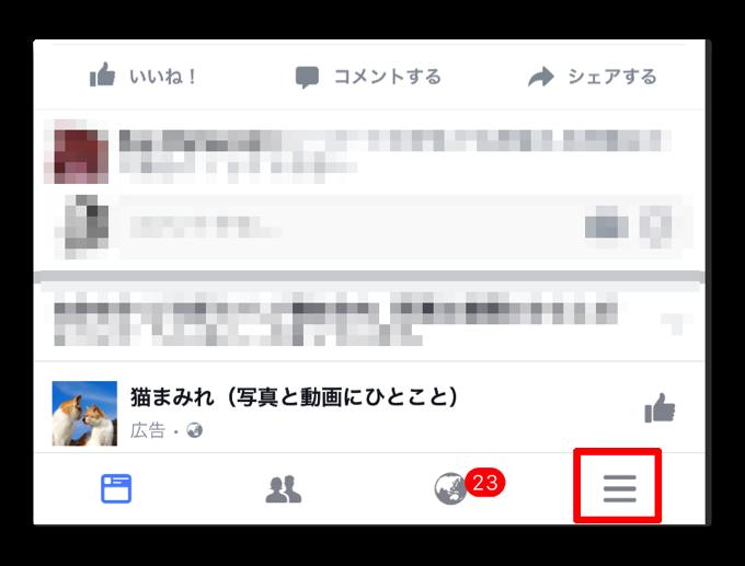 FacebookPv 002