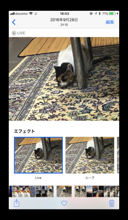 LivePhotosEffect 003