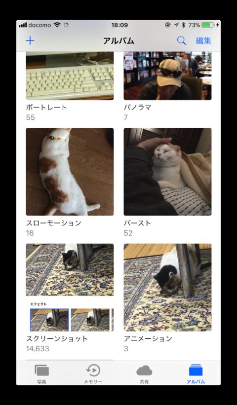 LivePhotosEffect 005