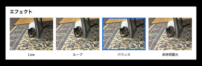 LivePhotosEffect 007