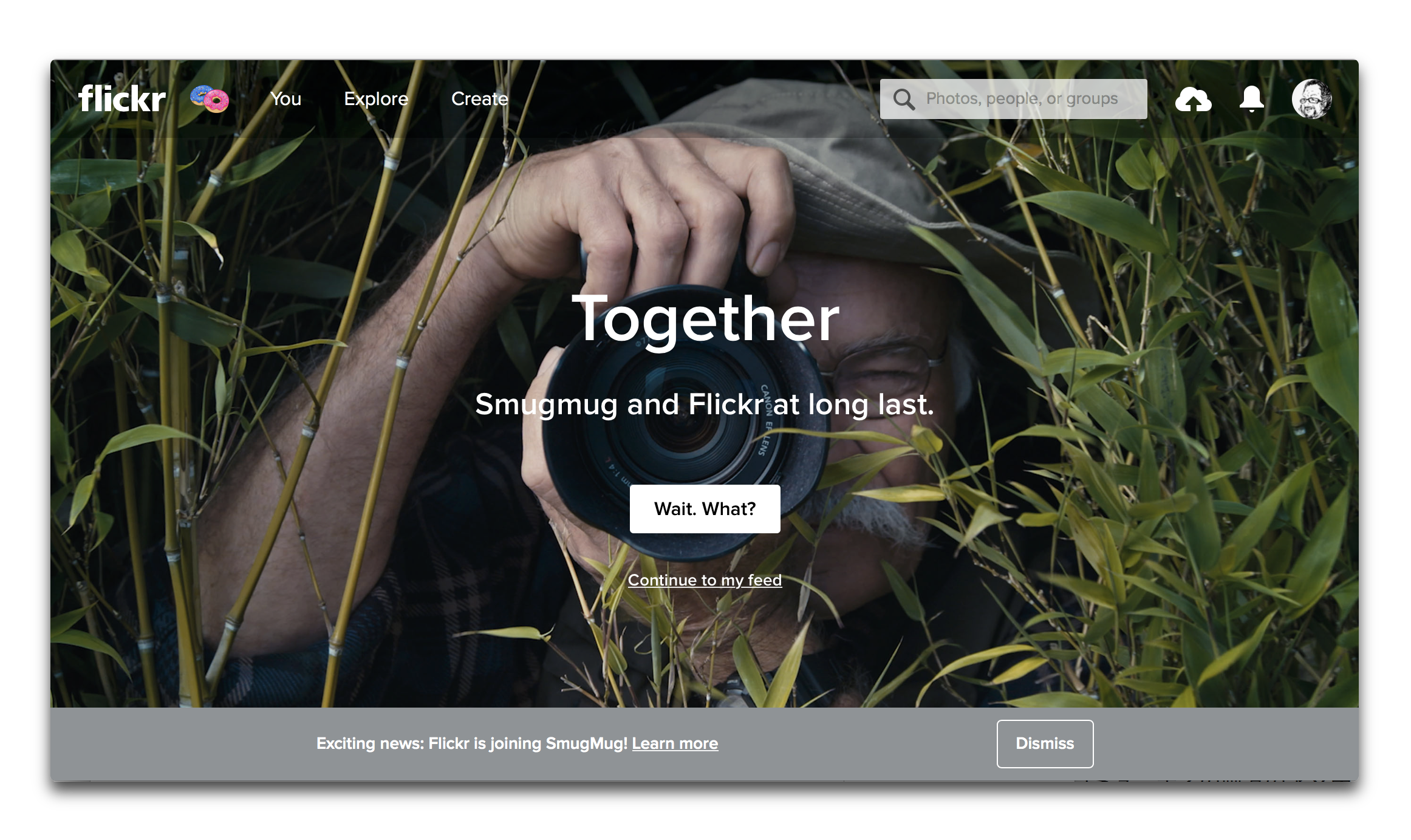Flickrは写真共有サービスSmugMugによって買収される