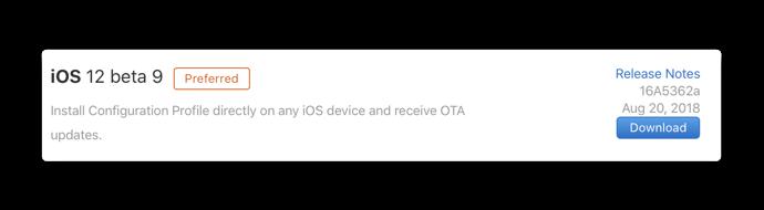 IOS 12 beta 9 001