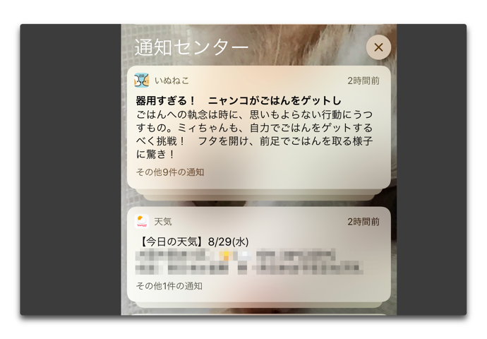 最新のiOS 12 beta 11では、3D Touch非対応でもタップ&ホールドで通知を全消去できる