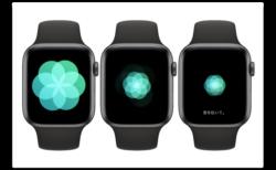 Apple Watchのアプリ「呼吸」のタイミングが合わない場合の変更方法