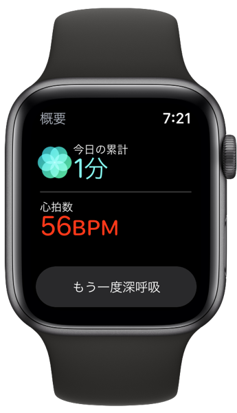 Apple Watch Bres 00005
