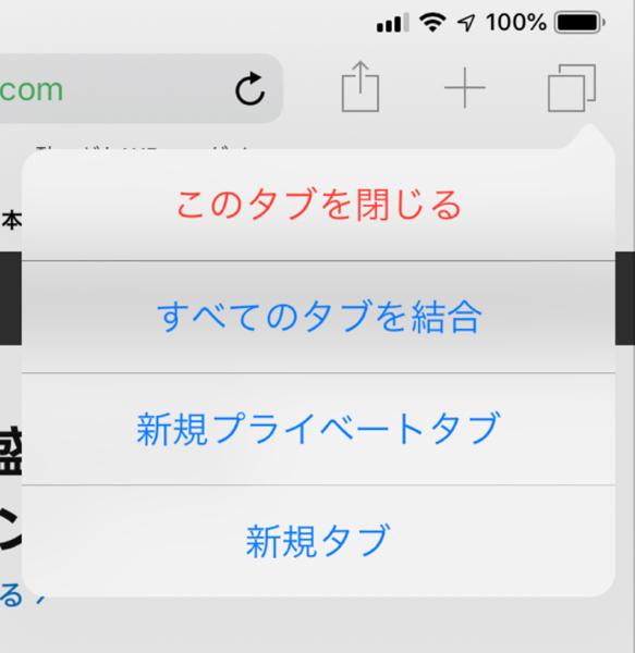 IPad Safari 2View 00005 z
