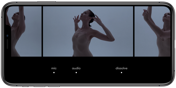 NIZO Editor Tools iPhoneMax