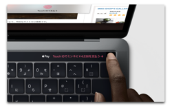 macOS Mojave 10.14.4ではSafari「自動入力」でTouch IDをサポート