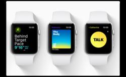 Apple、「watchOS 5.2.1 beta  4 (16U5110a)」を開発者にリリース
