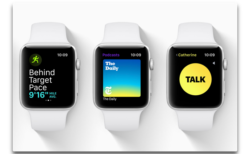 Apple、「watchOS 5.3 beta  4 (16U5558b)」を開発者にリリース