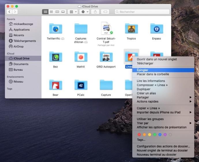 ICloud Shared Folder 00004 z