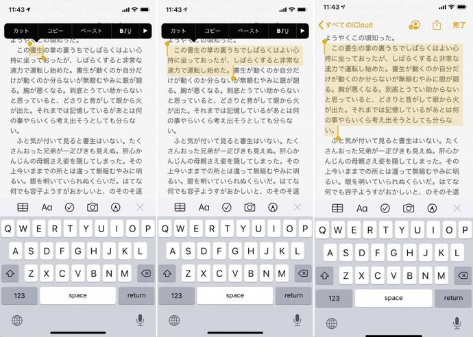 【iOS 13の新機能】システム全体および一般設定:テキスト編集