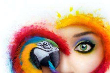 Adobe、バグで750万人のAdobe Creative Cloudユーザのデータが公開される