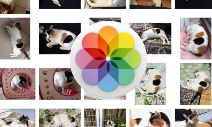 Macの「写真.app」で画像をエクスポートする方法による違いを理解する