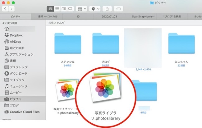 ICloud Photo Library BackUP 00003 z