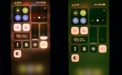 一部のiPhone 11 ユーザーは、異様な緑の色合いを持つディスプレイに苦情