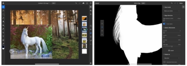 Photoshop for iPad 1 6 0 00003 z