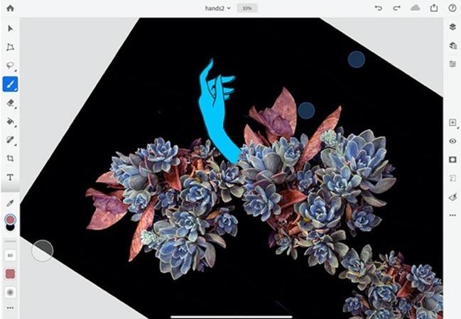Photoshop for iPad 1 6 0 00004 z