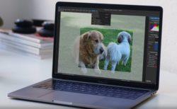 オープンソースの写真管理アプリケーション「digiKam 7」のMac版がリリース