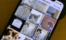 iPhoneから写真やビデオを共有するときにiCloudリンクが自動的に作成されないようにする