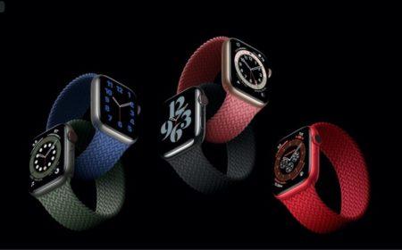 Apple Watch Series 6、ソロループおよびブレイデッドソロループのサイズ交換は1度だけ可能