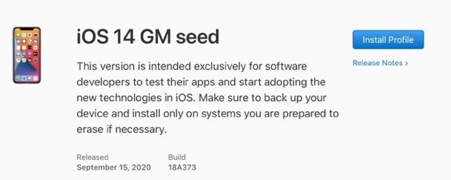 IOS 14 GM seed 00001 z