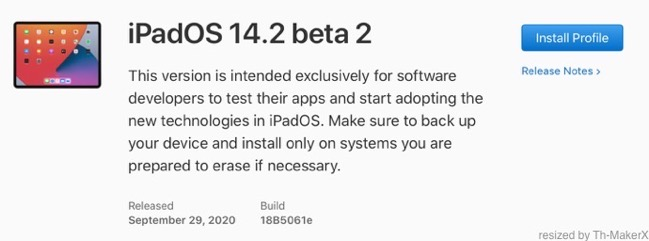 IPadOS 14 2 beta 2 00001 z