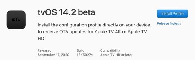 TvOS 14 2 beta 00001 z