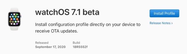 WatchOS 7 1 beta 00001 z