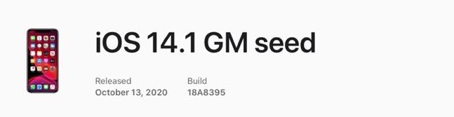 IOS 14 1 GM seed 00001 z